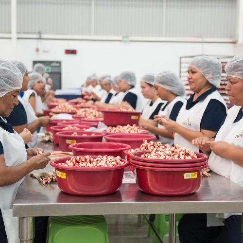 Apelsa_Carnaza-para-perro-Mexico-Fabrica-123